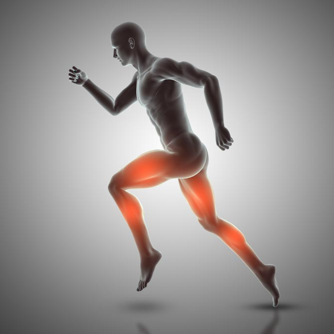contractiile musculare