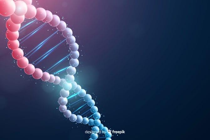 Noțiuni de fiziologie și biochimie