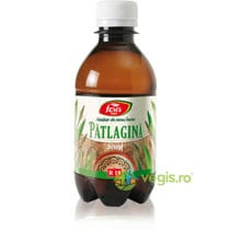 fares-sirop-patlagina-250ml-41467