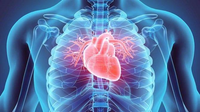 Reumatismul cardioarticular, bolile valvulare