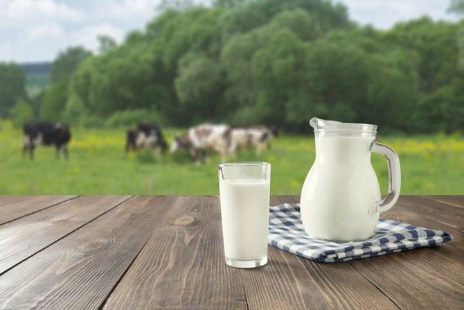 Isteria laptelui