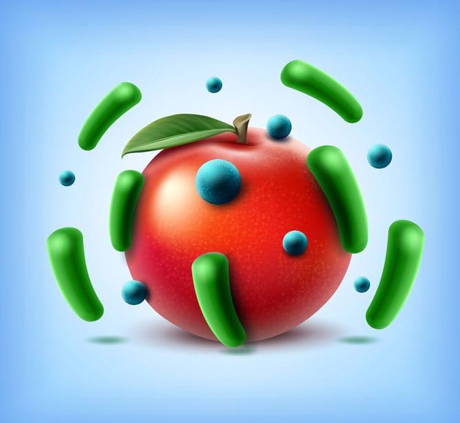 Microbii din alimente și băuturi